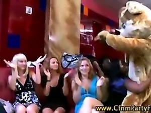 Dancing bear strips for ladies