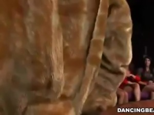 that horny bastard, the dancing bear, is at it again
