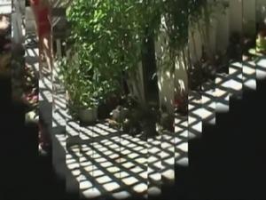 Brittany Sky vs Mandingo 3 (Classic) free
