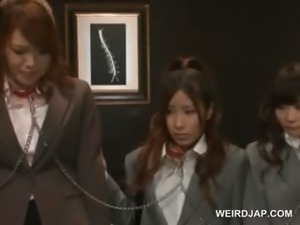 Chained asian hot trio attending a wild sex show