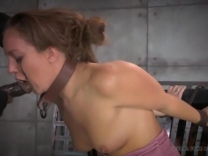 restrained bitch sucking a big dick