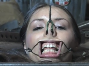 I had never saw such a perverted torture. Placed in a special box under the...