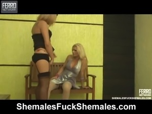 Two Hot Shemales Having Sex